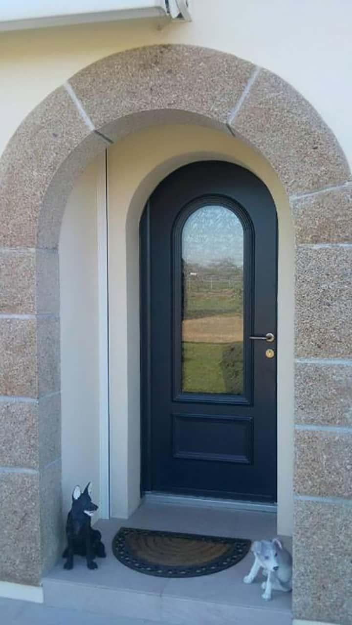porte d'entrée aluminium noire vitrée en long